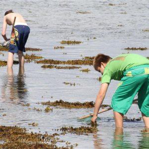 Sommercamp på Samsø for anbragte børn