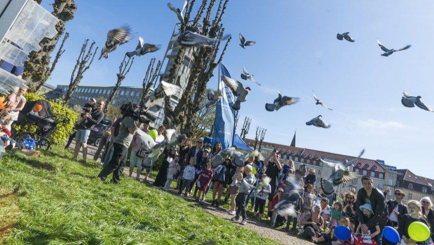 2018-05-06-Årets-Børnehjælpsdag-duer-Aarhus-foto-Per-Frahm-Thomsen-850_850x480_acf_cropped