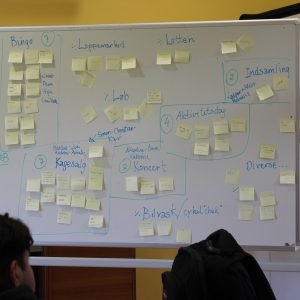 Ungdomsværn 2018: Idéer hos IUC